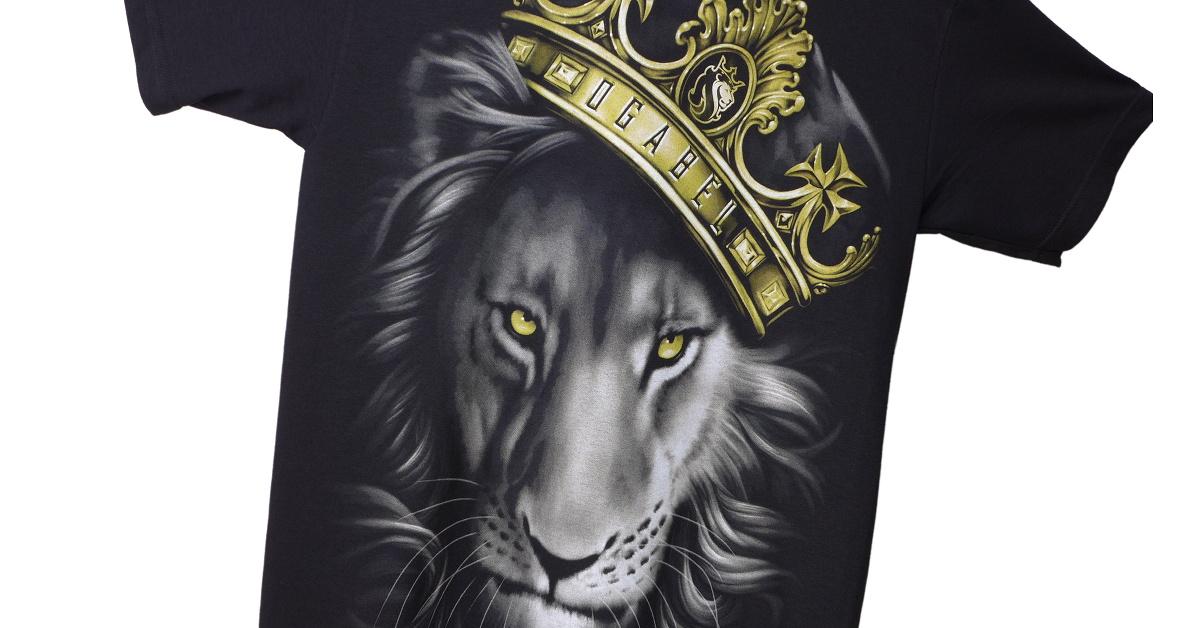 02_WEB_Slider_OG_Abel_Fierce_Lion_1200x628